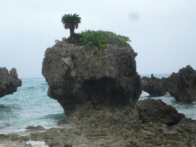 ちょんまげ岩近景