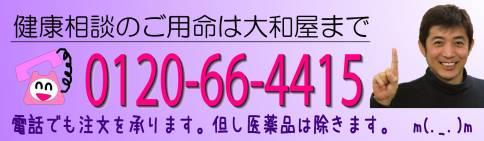 20110122_HP用大和屋電話案内_07.jpg