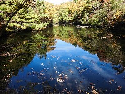 登山道途中にある峰池