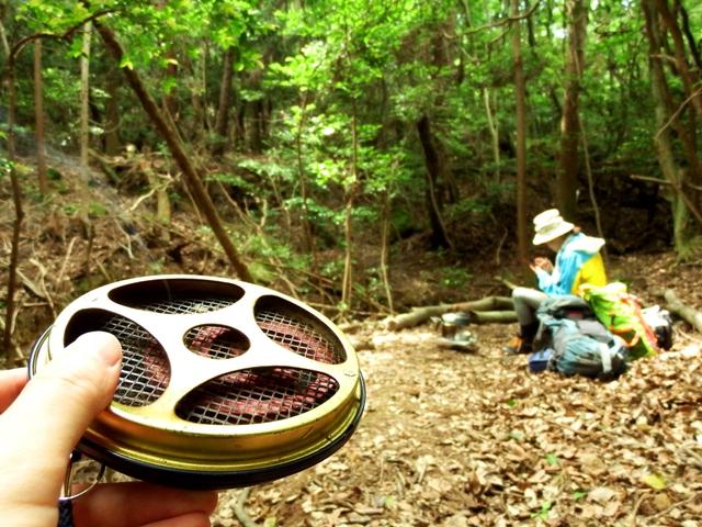 業務量蚊取り線香パワー森林香の効果
