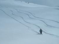 ゲレンデ外の新雪とシュプール