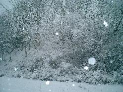 15年ぶりの大雪!