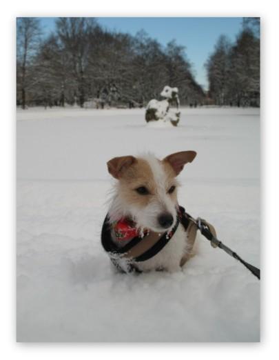 雪に埋もれたディアナ