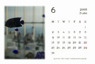 2008年6月のカレンダー