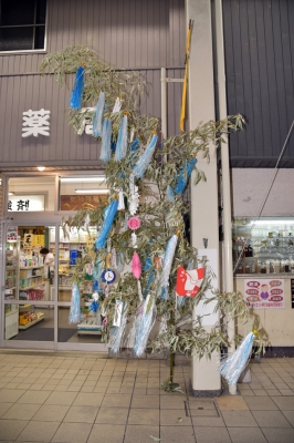 tanabata_17_1.jpg