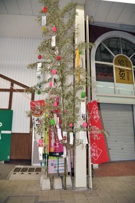 tanabata_23_1.jpg