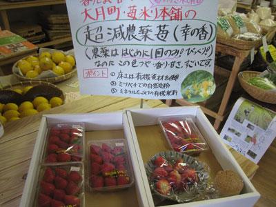 苺の売り場