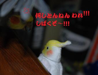 しばく!!