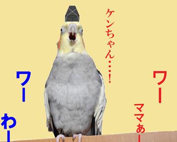 明美ちゃんも心配!!
