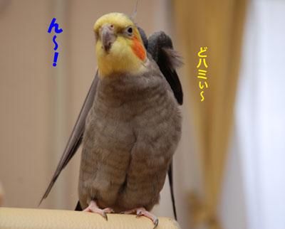 ん〜!.JPG