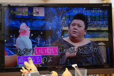 マツコさん.jpg