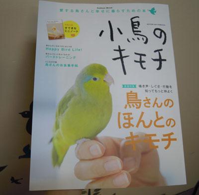 小鳥のキモチ.JPG