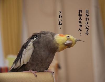 こわいね〜.jpg