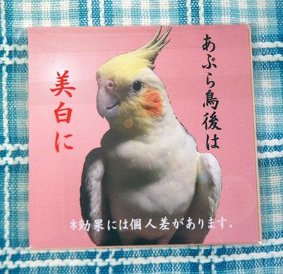 あぶらをお鳥(裏.jpg
