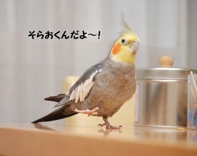 いろんなシーン_15694.jpg