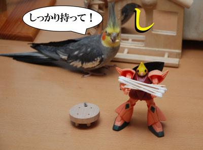 しっかり!.jpg
