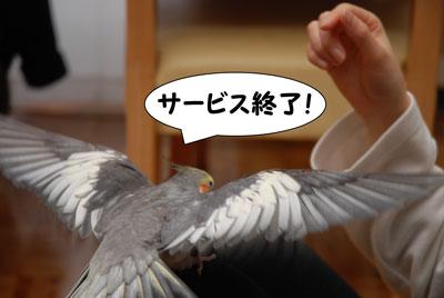なかよし!_8783.jpg
