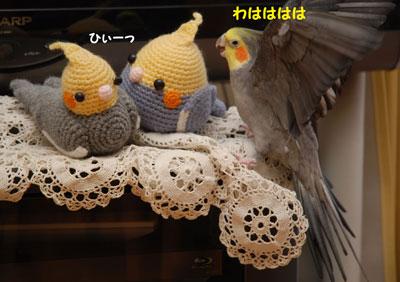 カルタ2(buroguyou.jpg