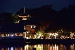 竹燈夜 in 妹背山