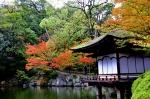 秋の和歌山城