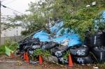 高津子山 台風被害