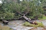 台風後の片男波
