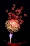 マリーナの花火
