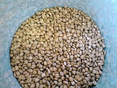 膨らんだコーヒー豆