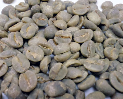 コーヒー生豆