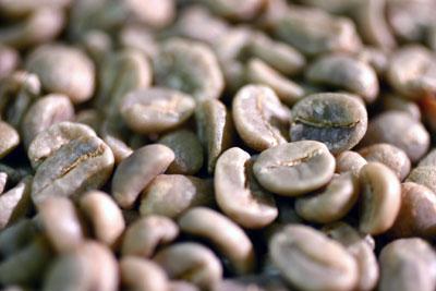 コーヒー生豆タンザニアAA