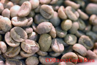 コーヒ生豆 COE2012コスタリカ