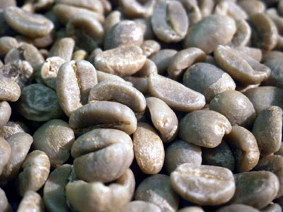 コーヒー生豆サンアグスティンEX