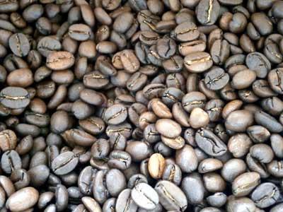 コーヒー豆グァテマラSHB