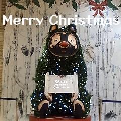 クマのクリスマスツリー