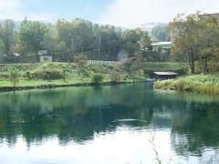 Lunker-pond