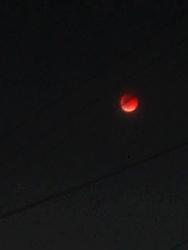 2007.8.28 皆既月食