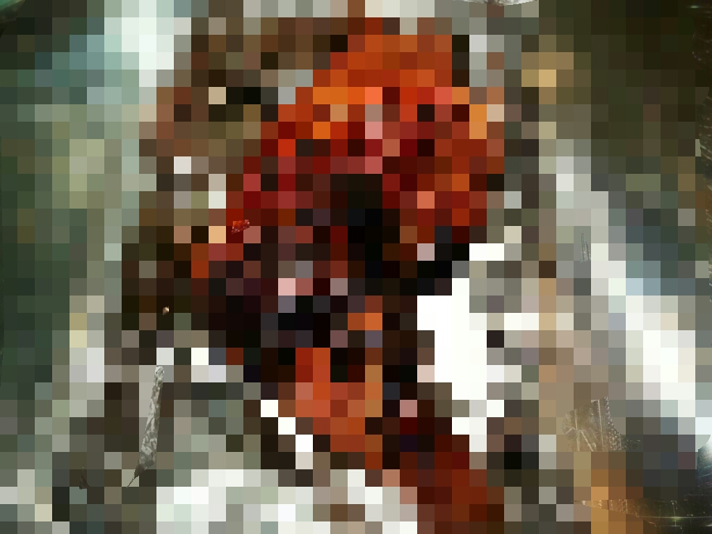tori mozaiku