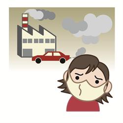 大気汚染がアトピーの原因