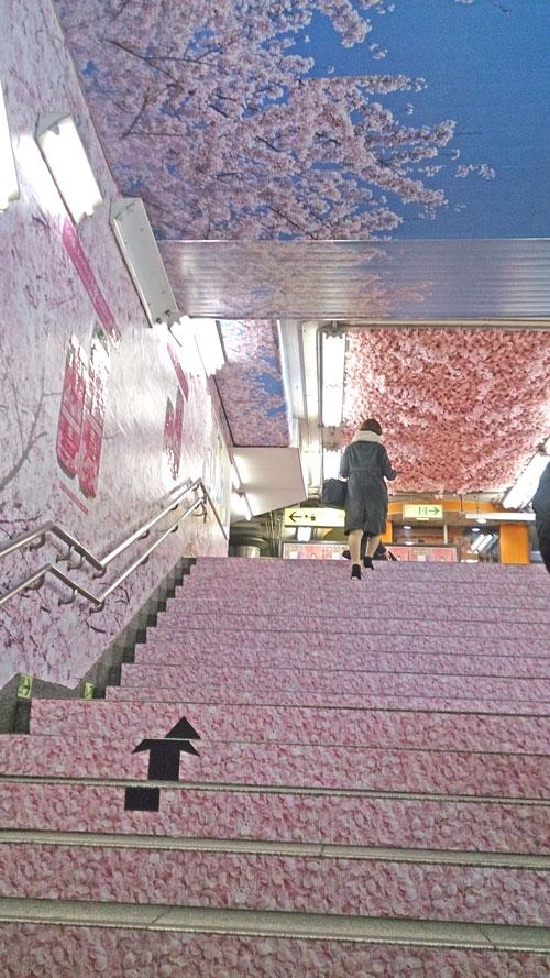 銀座線上野駅の桜装飾