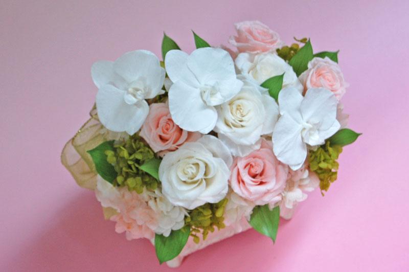 胡蝶蘭と薔薇1.jpg