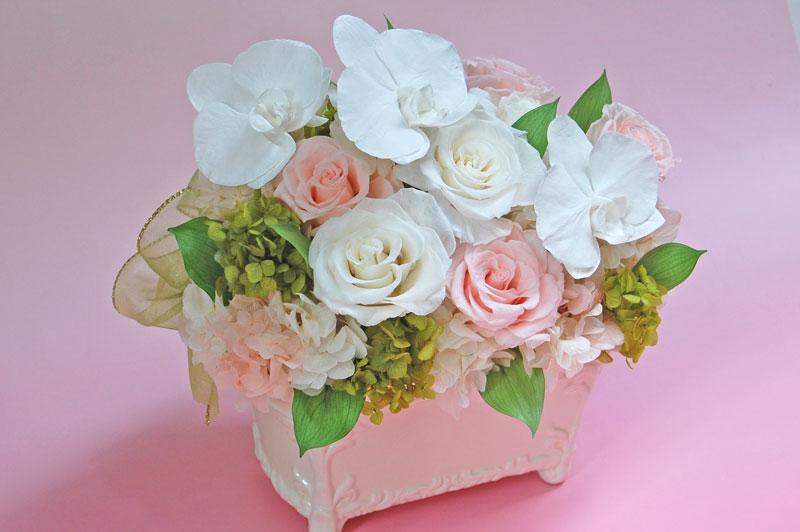 胡蝶蘭と薔薇2.jpg