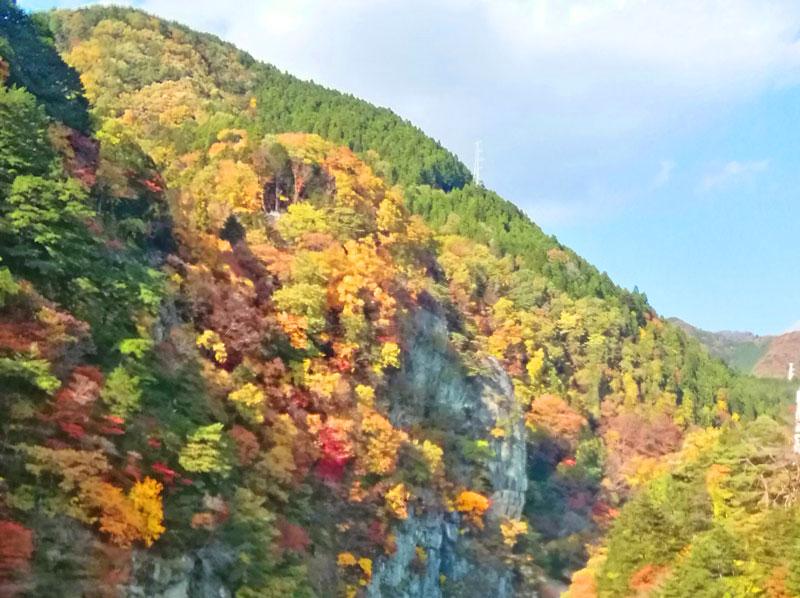紅葉(山と空)
