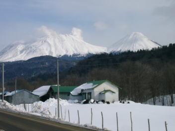 平成21年2月7日 茂足寄より雌阿寒岳を望む