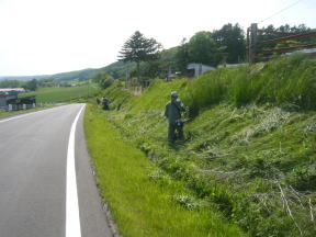 農道沿いの草刈り