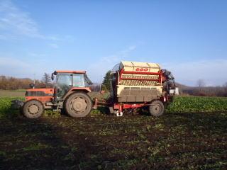 ビートの収穫作業(ビートハーベスター)