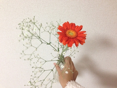 IMG_7769.JPG