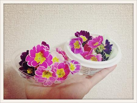写真 2014-02-04 20 46 26.jpg