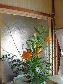 20070217玄関の花