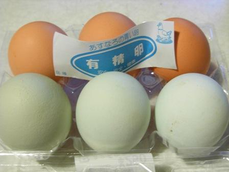 烏骨鶏の卵