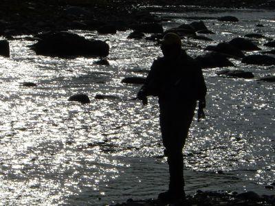 河畔にたたずむ影